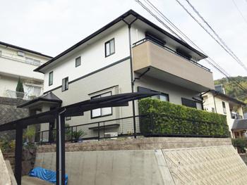 A_01_Kmkd_keyaki.JPG
