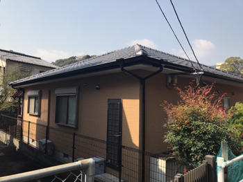 A_01_SkI_kanehori.JPG