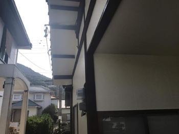 A_02_Ysd_narumidai.jpg