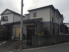 B_01_Fkys_wakakusa.JPG