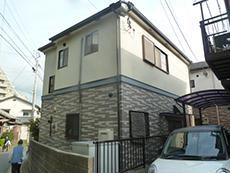 B_02_Fkys_wakakusa.JPG